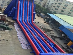 Giant Inflatable Hippo Slide