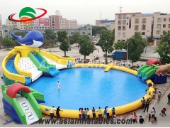 Inflatable Shark Water Slide with Pool
